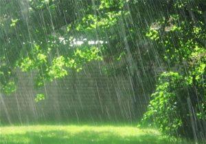 پیش بینی فصل بارشی پاییز در شهرستان جم
