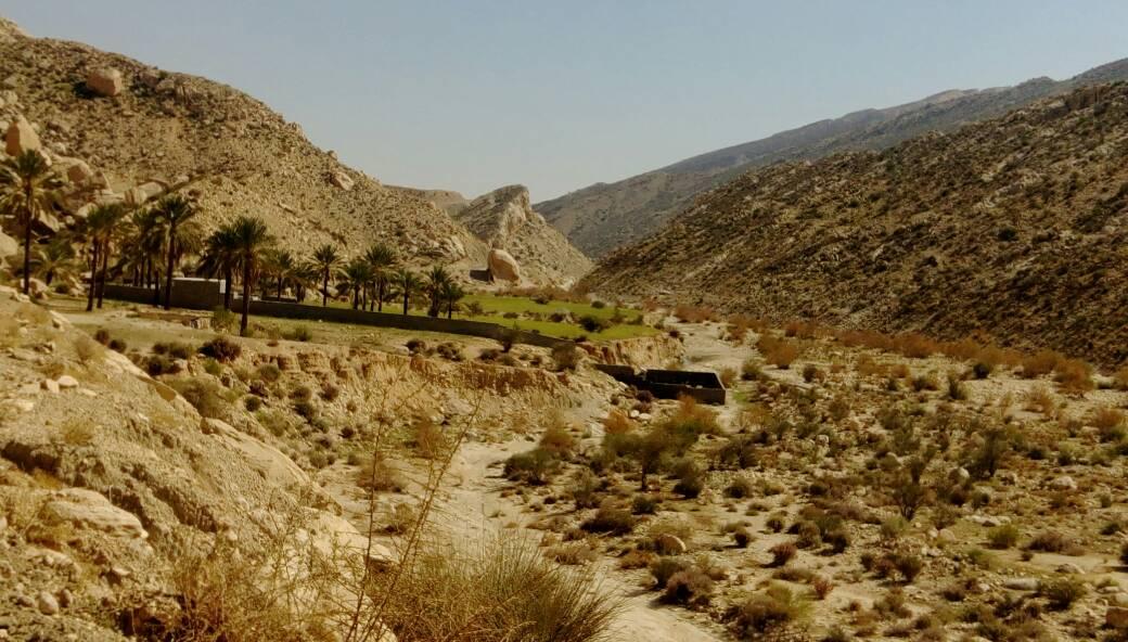 ساخت و ساز غير مجاز در روستاي توريستي جم